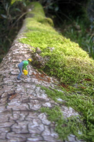 microworlds_figuresinalandscape_forestry_fellingatree